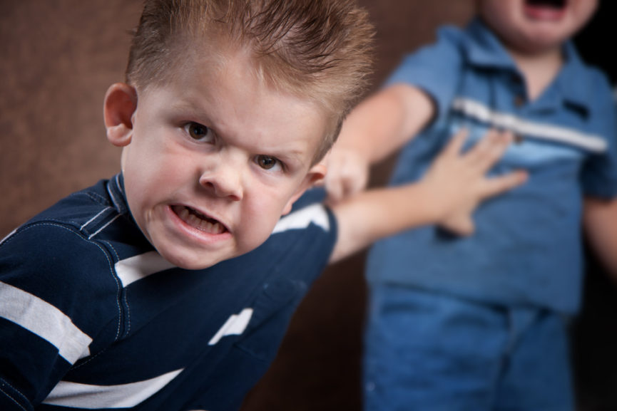 Kinderen vaak ruzie? Lees deze blog
